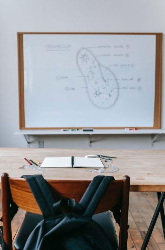 Cómo afrontan los jóvenes con Trastornos de Conducta la vuelta al cole