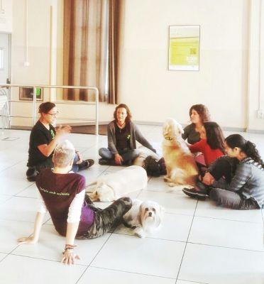 Smiling Dog: sonrisas terapéuticas en ITA Sabadell