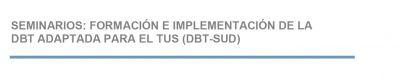 Seminarios: Formación e implementación de la DBT adaptada para el TUS (Trastorno Uso de Sustancias)