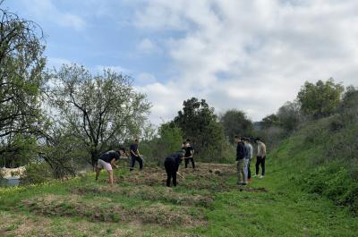 El nuevo huerto de ACUDE Málaga: una nueva actividad terapéutica para el grupo de TC