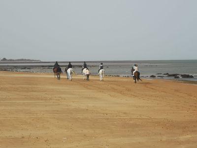 Paseo a caballo por la playa de Sanlúcar de Barrameda